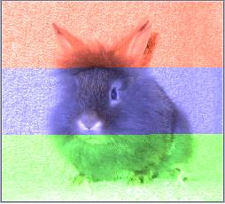Uploaded Image: RGBrainbow.JPG
