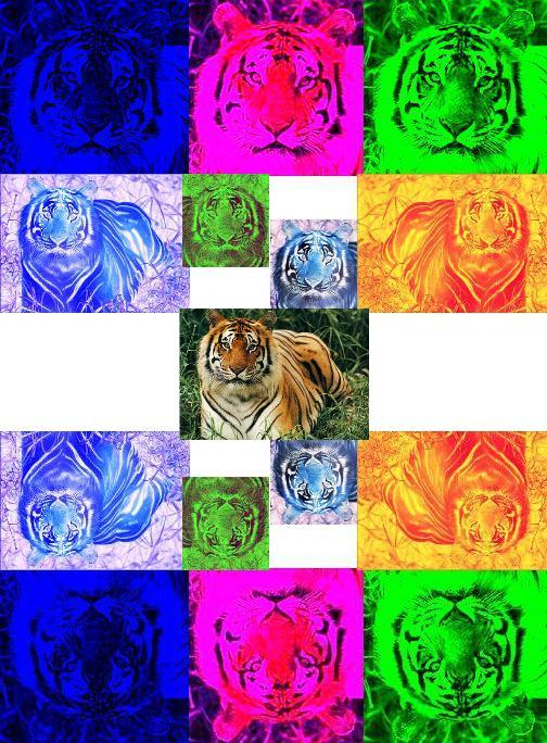 Uploaded Image: tigercollage.jpg