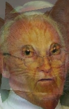 Uploaded Image: manCat3.jpg